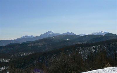入笠山は春でした_f0019247_2341261.jpg