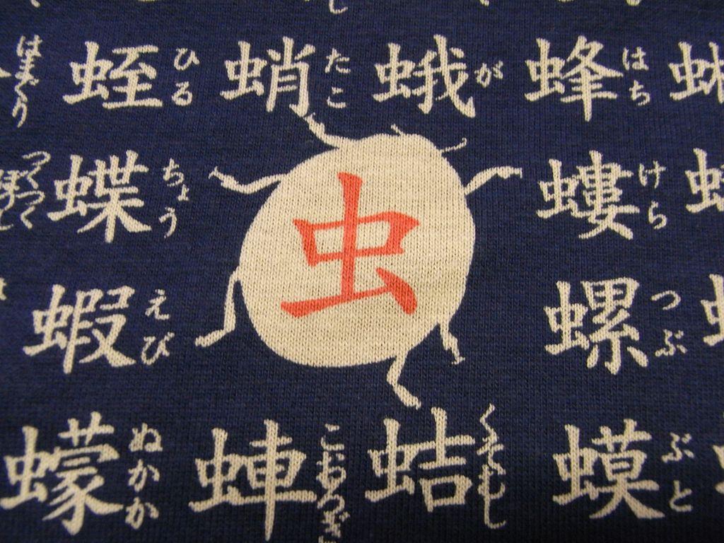 漢字ブーム_c0025115_1949364.jpg