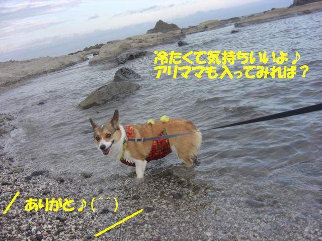 f0182121_15535010.jpg