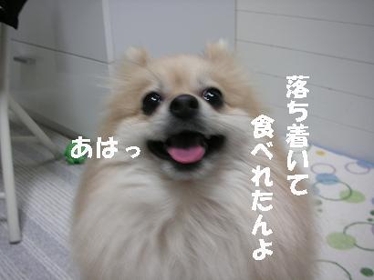 c0179136_223317.jpg