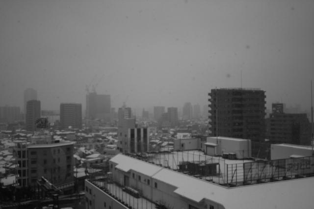 去年、雪の日_f0135451_2355040.jpg