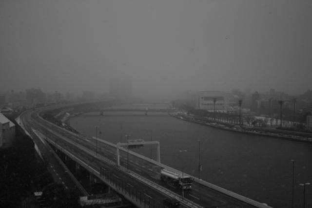 去年、雪の日_f0135451_23551860.jpg