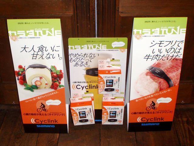 SHIMANO CYCLINK_e0132852_17303879.jpg