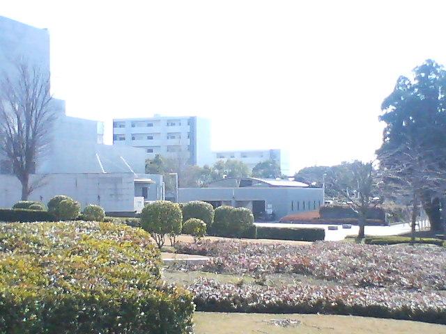 文化公園からも見えました。_d0113861_1315890.jpg