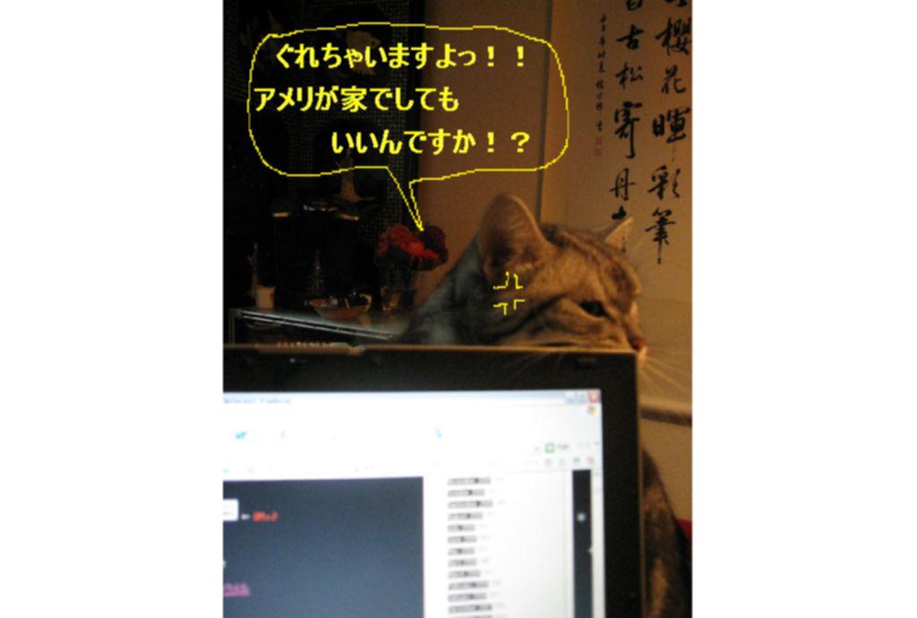 d0132661_142404.jpg