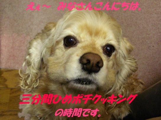 b0067012_1551377.jpg