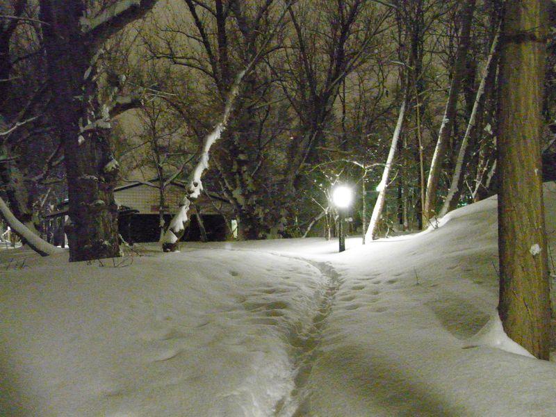 新雪の中を_c0025115_17433189.jpg