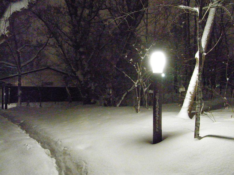 新雪の中を_c0025115_17442129.jpg