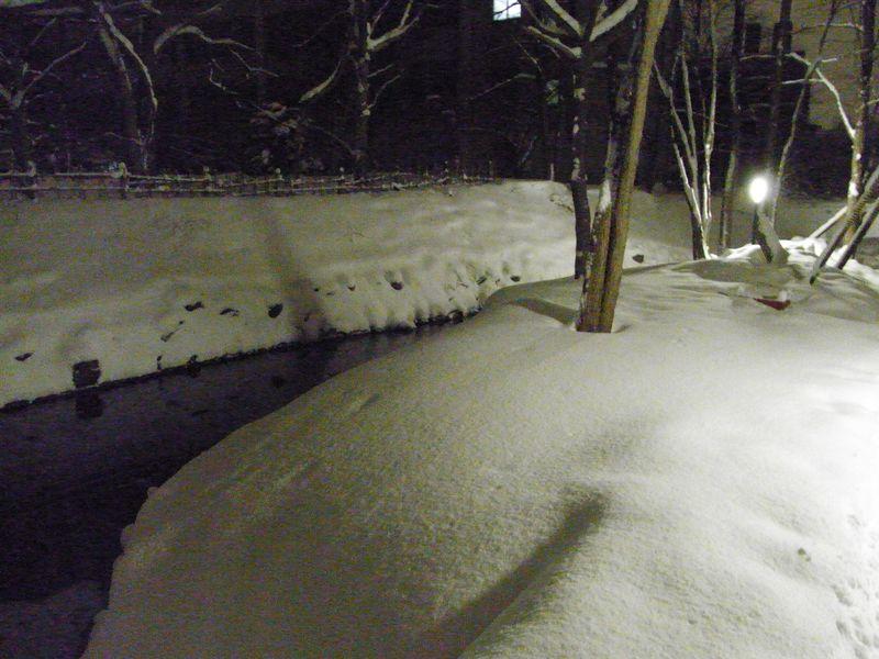 新雪の中を_c0025115_17455515.jpg