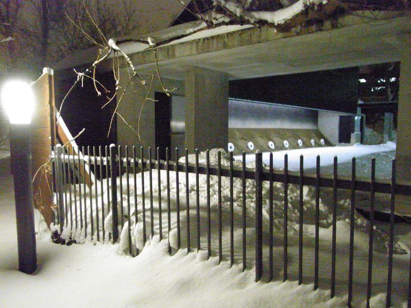 新雪の中を_c0025115_17463826.jpg