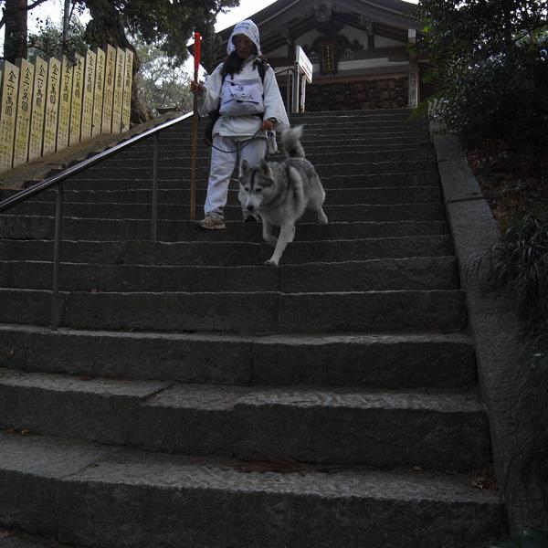 12月12日 おへんろ32日め♪ by GX100_c0049299_10474938.jpg