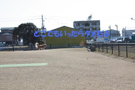 f0114128_19204936.jpg