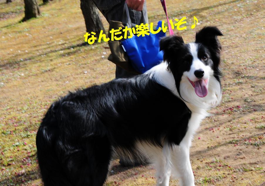 c0147241_2214959.jpg