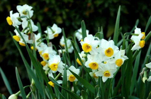 春はそこまで_b0093754_0201850.jpg