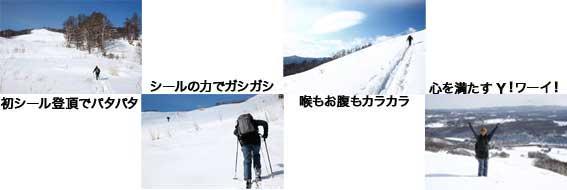 b0088558_11424416.jpg