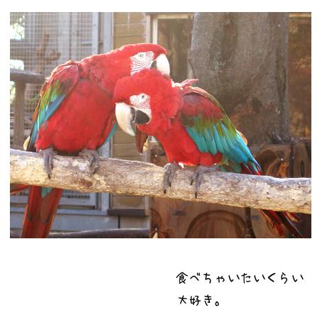 f0192530_001242.jpg