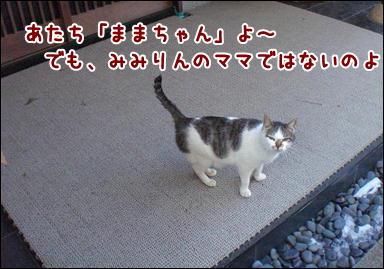 d0139352_030462.jpg