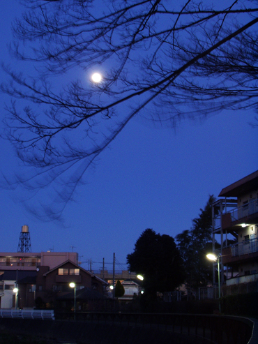 風と月_e0071652_21394712.jpg