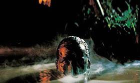 動物園 象の池で、_b0121563_19373228.jpg