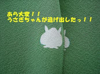 f0198285_154107.jpg