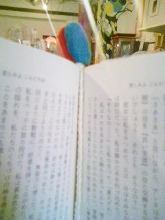 b0077189_16531912.jpg