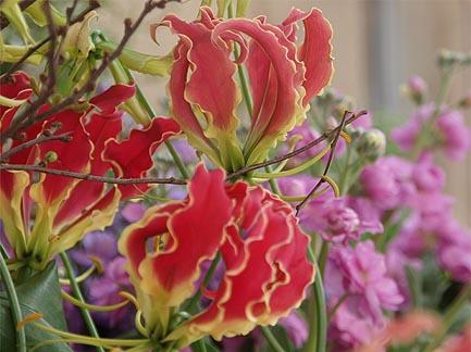 【旬のイチオシ!】春の花いろいろ( byラ・パンセ)_b0151490_23101393.jpg