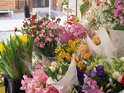 【旬のイチオシ!】春の花いろいろ( byラ・パンセ)_b0151490_2395774.jpg