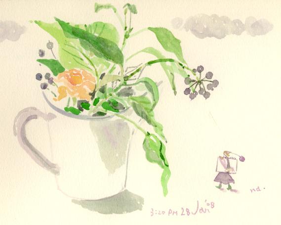 植物スケッチ 2_d0115092_8135430.jpg
