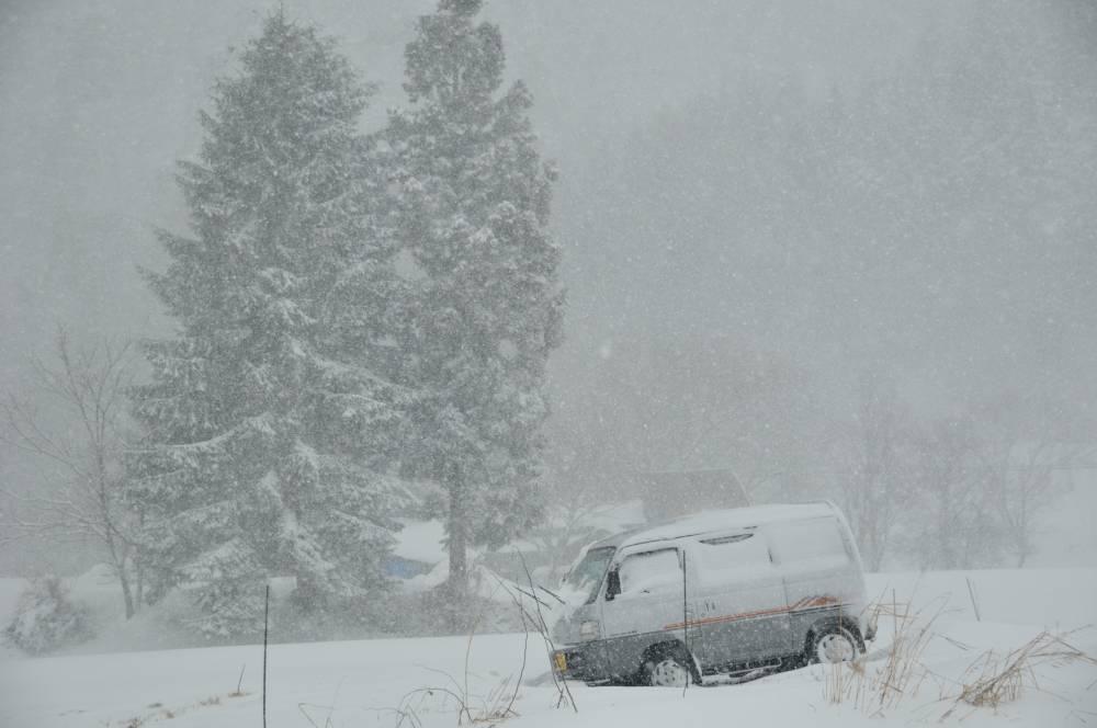 吹雪の日_b0074098_7343317.jpg