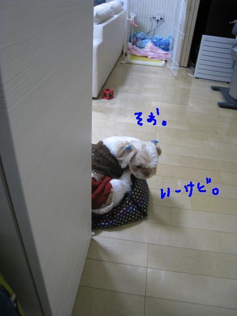 f0195809_221246.jpg