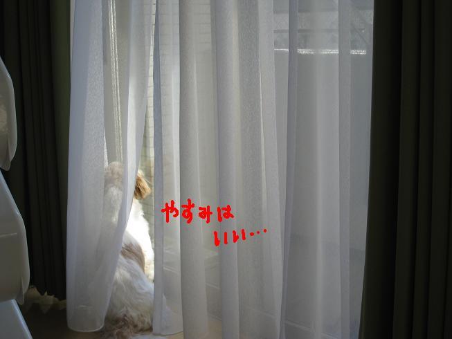 f0195809_22331356.jpg