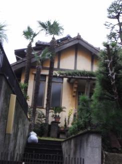 玄関前のシュロの木三本_c0016913_1256548.jpg