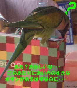 c0133013_1537411.jpg