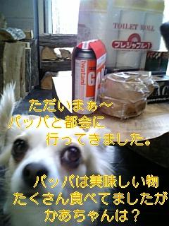 f0148927_18405057.jpg