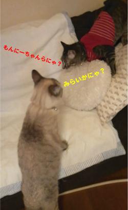 b0035734_16493520.jpg