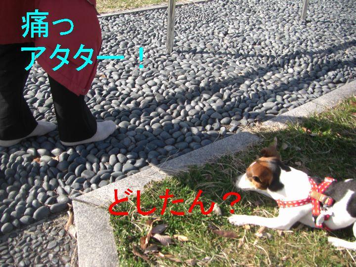 f0053952_1331966.jpg