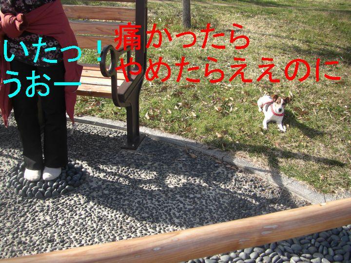 f0053952_1338798.jpg