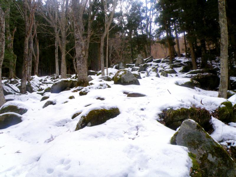 冬の五百羅漢_f0075075_16542011.jpg