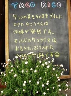 咲いたよ_e0141978_0275013.jpg