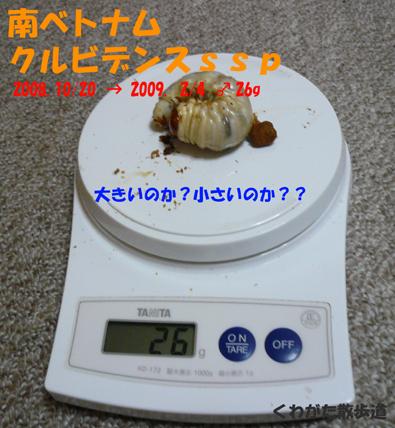 f0183484_15125618.jpg
