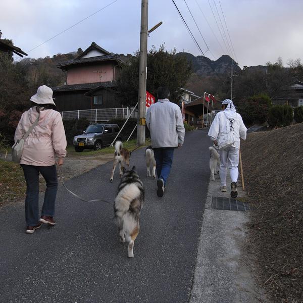12月13日 おへんろ33日め♪ by GX100_c0049299_8565180.jpg