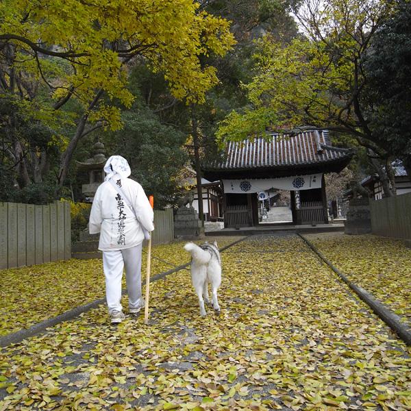 12月13日 おへんろ33日め♪ by GX100_c0049299_8571041.jpg
