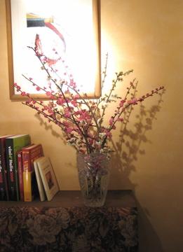 増田農園、春支度_c0130206_23494942.jpg