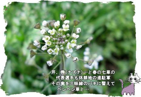 f0137096_10295236.jpg