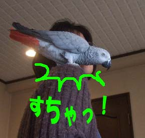 c0133013_14204926.jpg