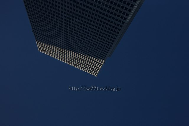 b0113131_434375.jpg