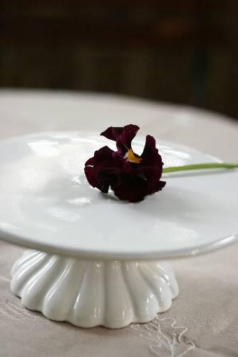 ケーキのためのちいさなお皿_c0097842_16442219.jpg