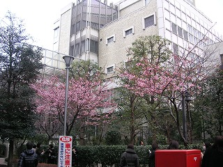 日帰り夜行バス Buono!ライブ遠征_d0144184_22441875.jpg
