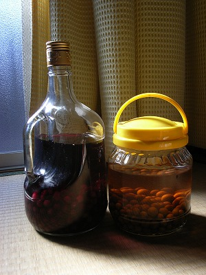果実酒_e0114895_179660.jpg