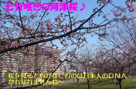 ヤキモチべっちゃん_f0121712_10474992.jpg